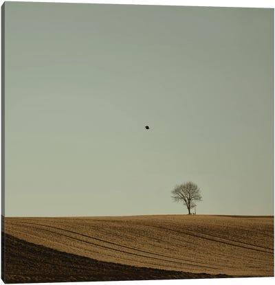 Odeeeee To The Land Canvas Art Print