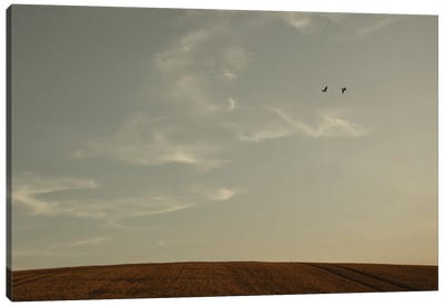 Signs In The Sky Canvas Art Print
