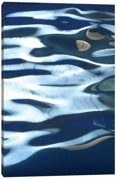 H2O XXV Canvas Art Print