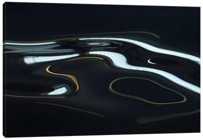 H2O XX Canvas Art Print