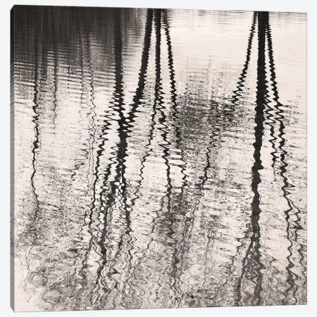 Mirroring Canvas Print #LEW36} by Lena Weisbek Art Print