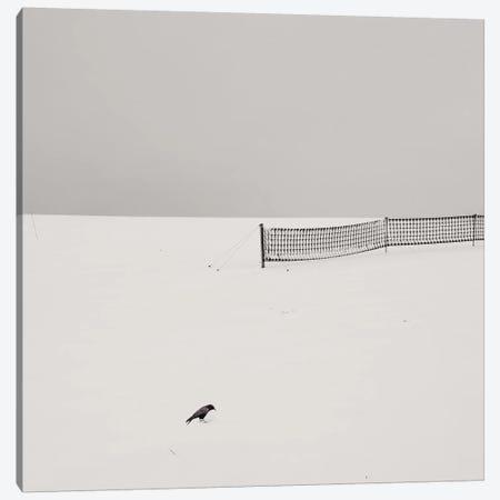 The Bird Canvas Print #LEW44} by Lena Weisbek Canvas Wall Art