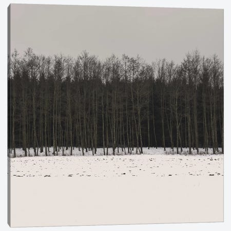 Winter Woods Canvas Print #LEW47} by Lena Weisbek Canvas Artwork