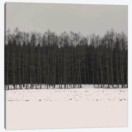 Winter Woods Canvas Print #LEW47} by Lena Weisbek Canvas Artwork