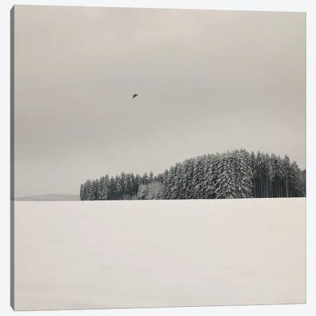 Winterscape Canvas Print #LEW48} by Lena Weisbek Art Print