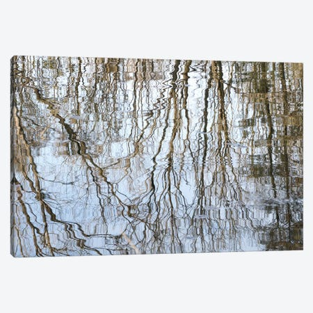 Flowing Lines Canvas Print #LEW58} by Lena Weisbek Canvas Art