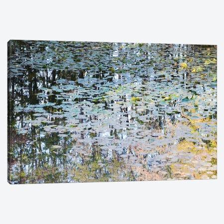 Picturesque Pond Canvas Print #LEW67} by Lena Weisbek Canvas Art