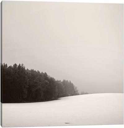 Snowy Hillscape Canvas Art Print