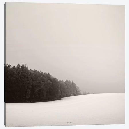 Snowy Hillscape Canvas Print #LEW72} by Lena Weisbek Canvas Artwork