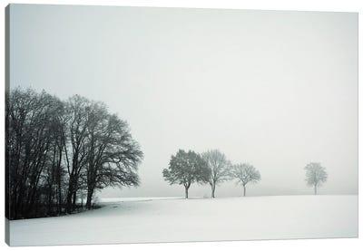 Calm Winter Day Canvas Art Print