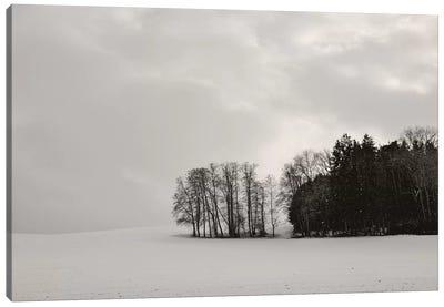 Sleepy Winter Landscape Canvas Art Print