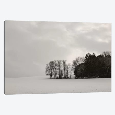 Sleepy Winter Landscape Canvas Print #LEW93} by Lena Weisbek Canvas Art