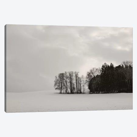 Sleepy Winter Landscape Canvas Print #LEW93} by Lena Weisbek Canvas Art
