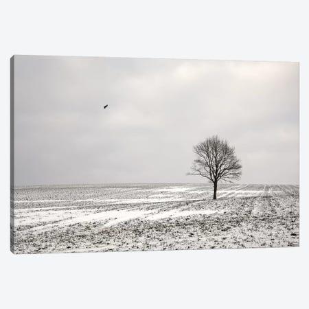Loneliness Canvas Print #LEW94} by Lena Weisbek Art Print