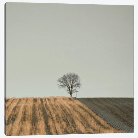 On The Way Cross Canvas Print #LEW97} by Lena Weisbek Art Print