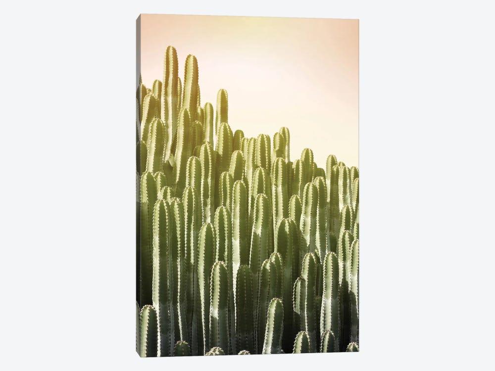 Pink Sky Cactus by Lexie Greer 1-piece Art Print