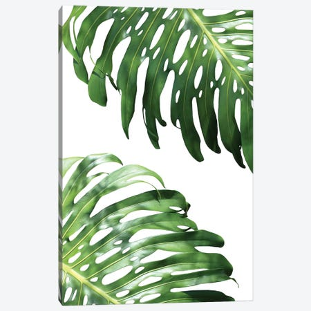 Double Philodendron Canvas Print #LEX2} by Lexie Greer Canvas Art Print