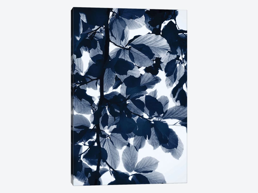 Indigo Leaves by Lexie Greer 1-piece Canvas Print