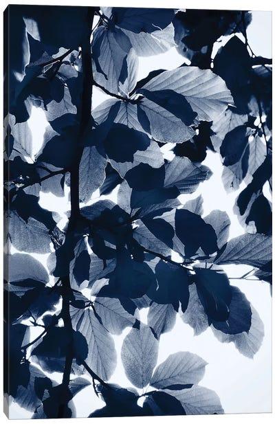 Indigo Leaves Canvas Art Print