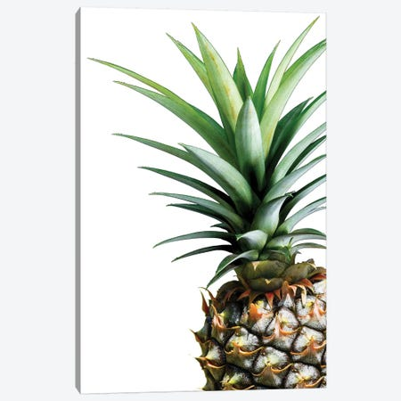 Pineapple Canvas Print #LEX8} by Lexie Greer Canvas Art Print