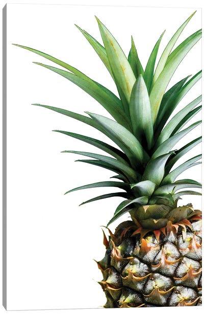 Pineapple Canvas Print #LEX8