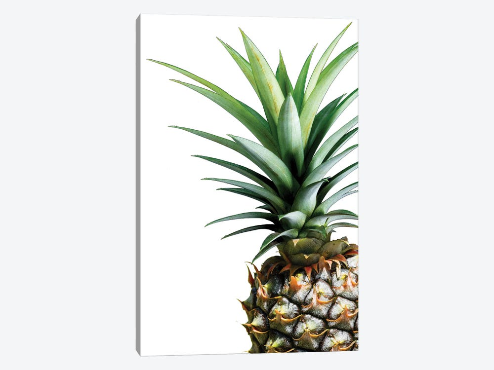 Pineapple by Lexie Greer 1-piece Canvas Art