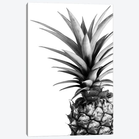 Pineapple In B&W Canvas Print #LEX9} by Lexie Greer Canvas Art Print