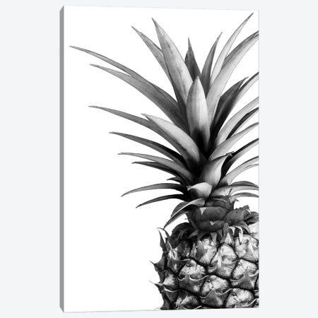 Pineapple In B&W Canvas Print #LEX9} by Lexie Greer Canvas Art Print