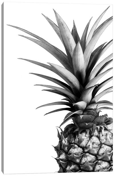 Pineapple In B&W Canvas Art Print