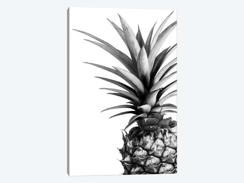 Pineapple In B&W by Lexie Greer 1-piece Art Print
