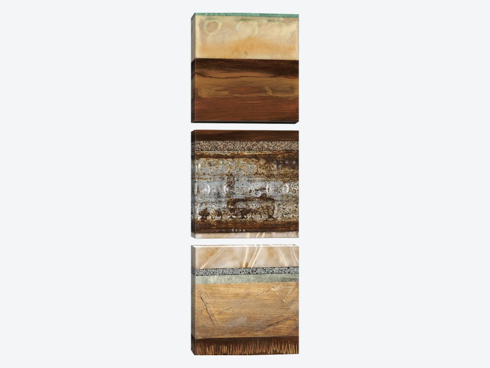Earthware II by Laurie Fields 3-piece Canvas Print