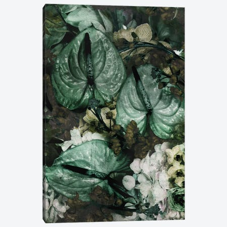 Fleur Trois Canvas Print #LFR108} by Linnea Frank Canvas Art Print