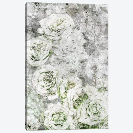 La Rose Blanche Canvas Print #LFR110} by Linnea Frank Canvas Art