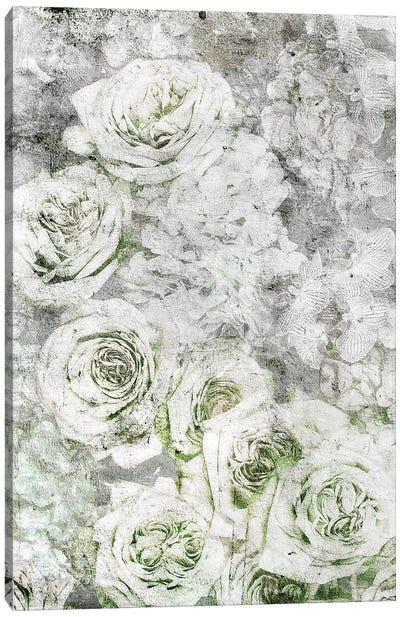 La Rose Blanche Canvas Art Print