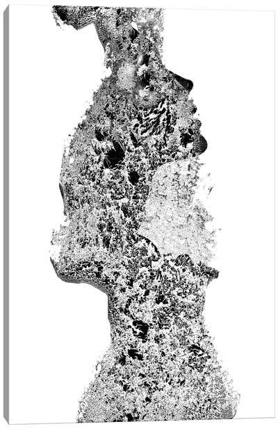 Sono I In Black & White Canvas Art Print