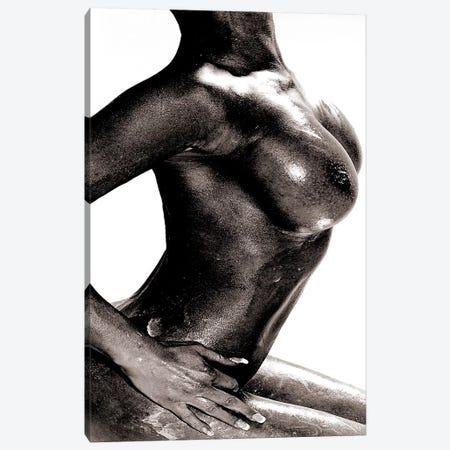 Breast Canvas Print #LFR15} by Linnea Frank Canvas Wall Art