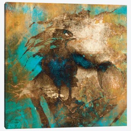 Falcon Canvas Print #LFR29} by Linnea Frank Canvas Artwork