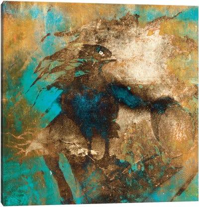 Falcon Canvas Art Print