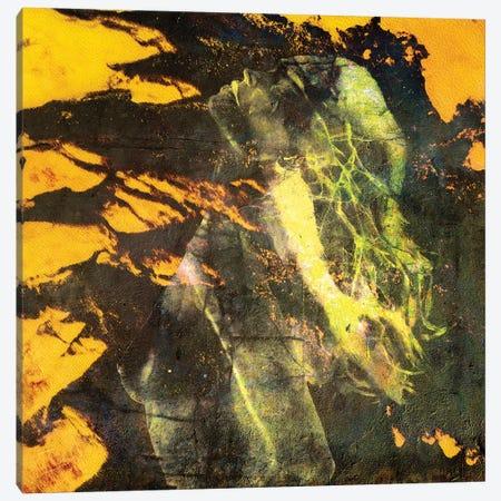 Kalon Canvas Print #LFR43} by Linnea Frank Canvas Art