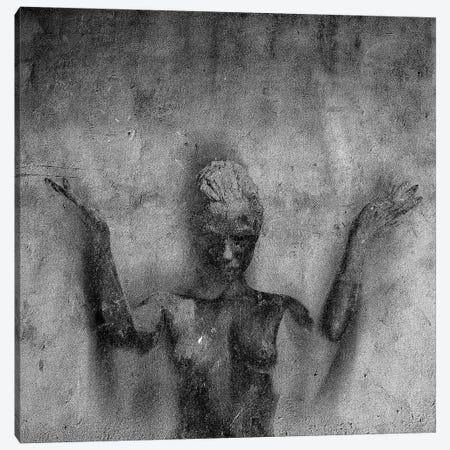 Ascendant 3-Piece Canvas #LFR9} by Linnea Frank Canvas Art