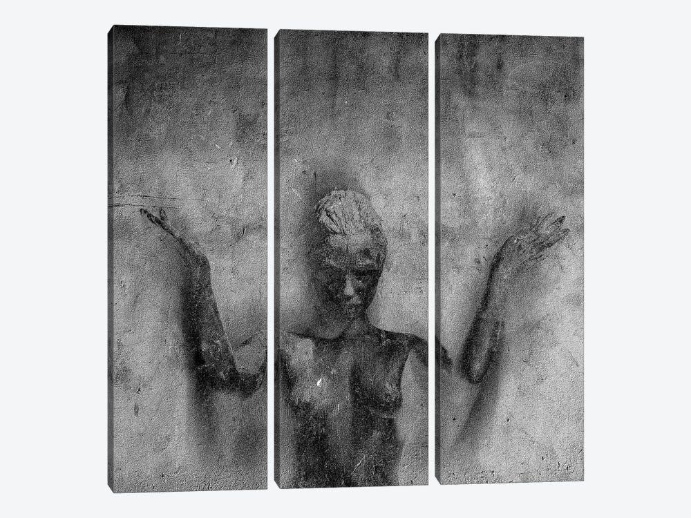 Ascendant by Linnea Frank 3-piece Canvas Print