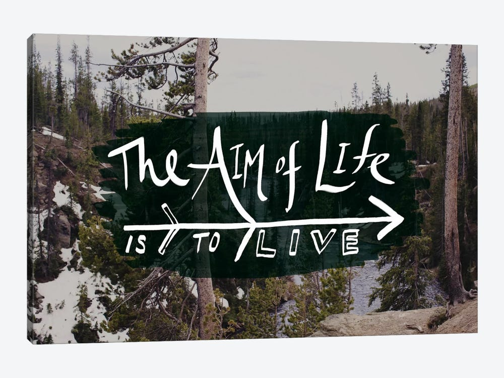 The Aim of Life by Leah Flores 1-piece Canvas Artwork