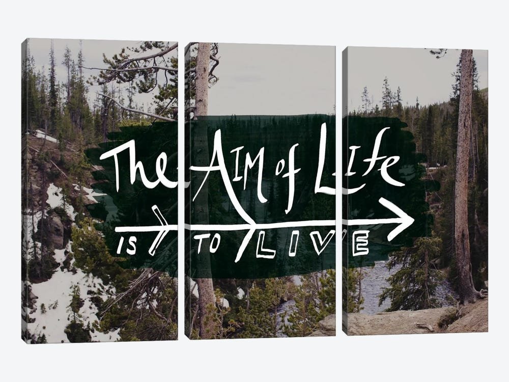 The Aim of Life by Leah Flores 3-piece Canvas Wall Art