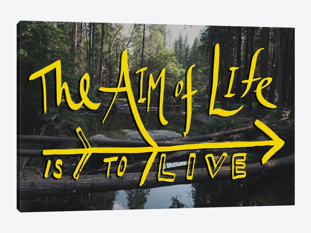 Aim of Life by Leah Flores 1-piece Canvas Art