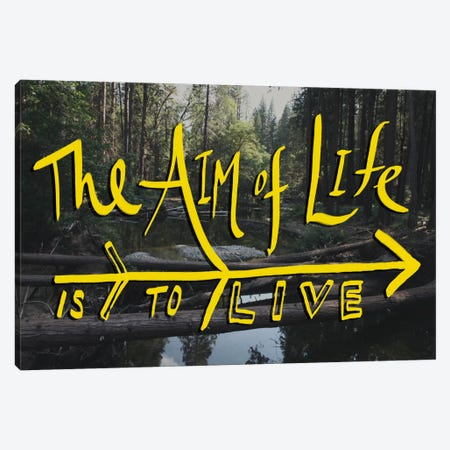 Aim of Life Canvas Print #LFS25} by Leah Flores Canvas Artwork