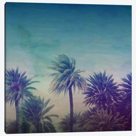 Palm Paradise Canvas Print #LFS49} by Leah Flores Art Print