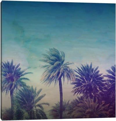Palm Paradise Canvas Print #LFS49