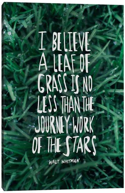 Leaf Of Grass Canvas Print #LFS73