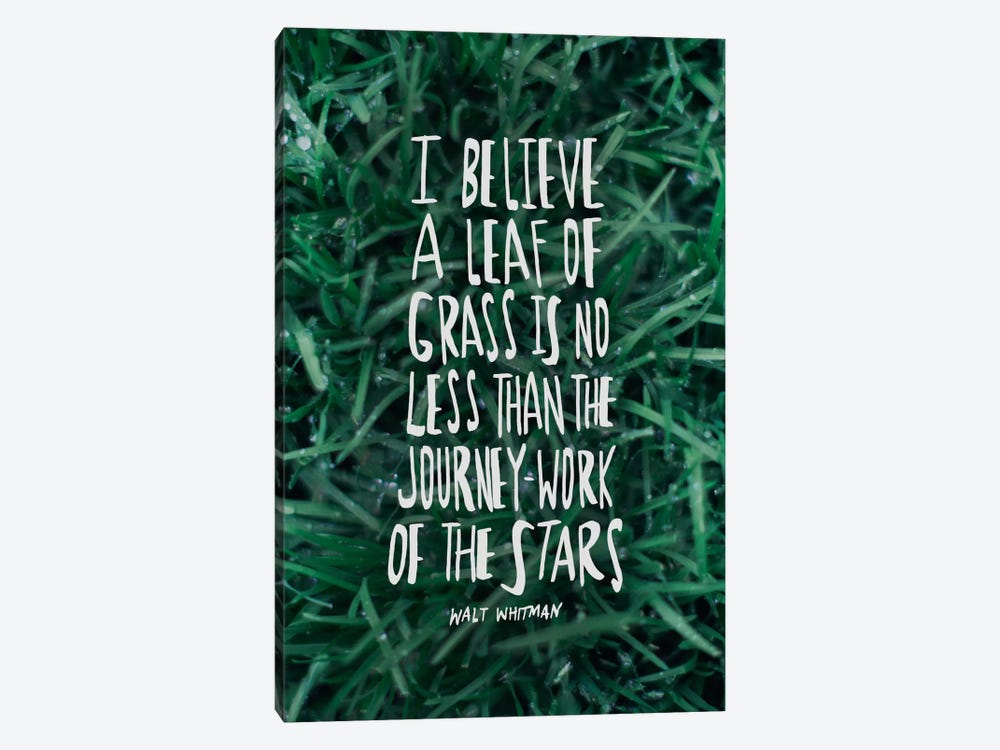 Leaf Of Grass by Leah Flores 1-piece Canvas Art Print