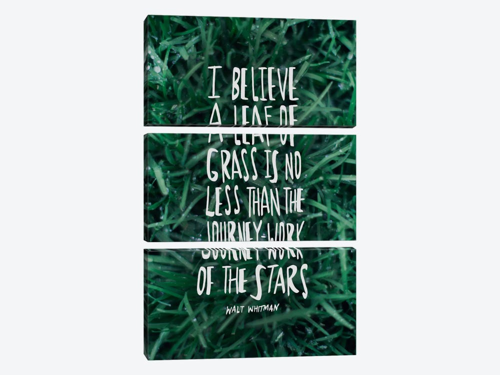 Leaf Of Grass by Leah Flores 3-piece Art Print
